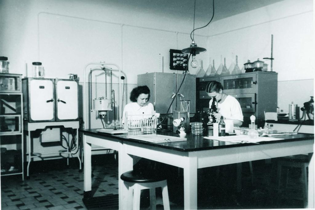 Работа в лаборатории по культивированию дифтерийных бактерий
