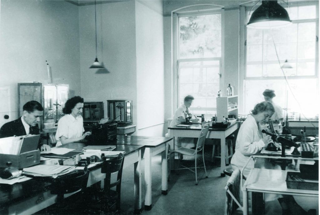 Серологическая лаборатория в 40-е годы